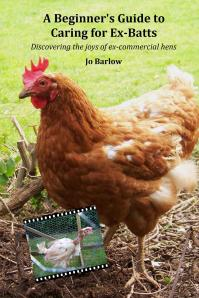 The book cover featuring Miss Audrey Chicken!